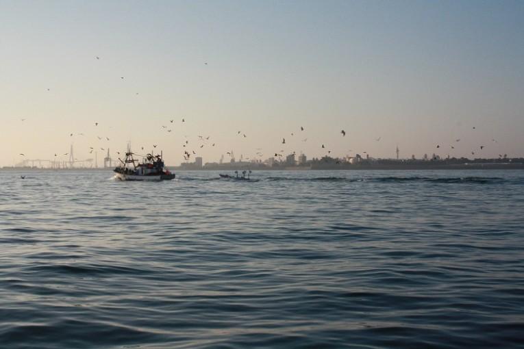 Rencontre avec des pêcheurs espagnols