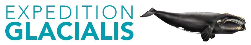 Logo-Glacialis